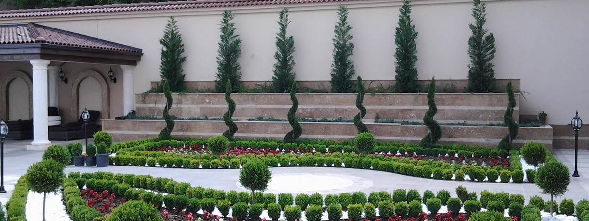 Комплексно озеленяване