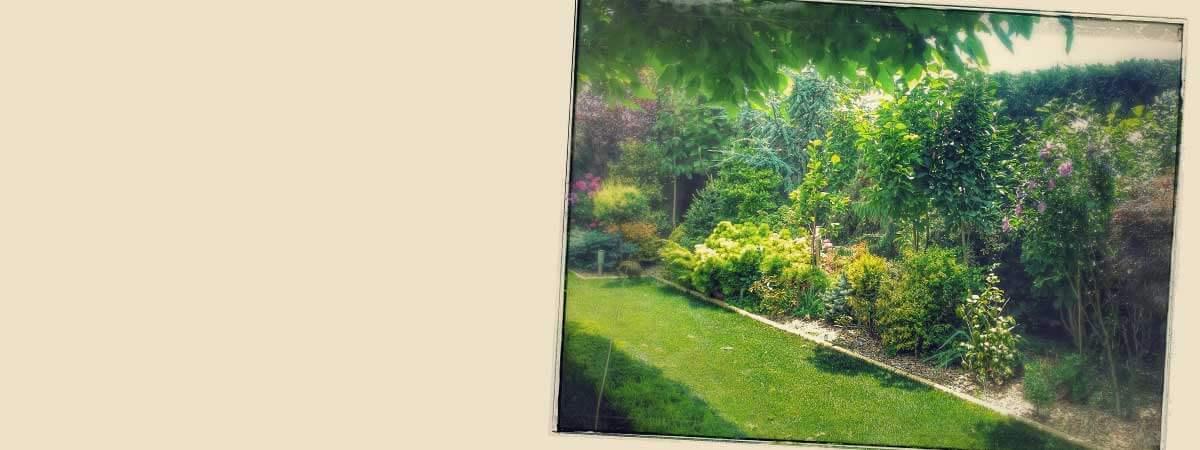 Приказни градини